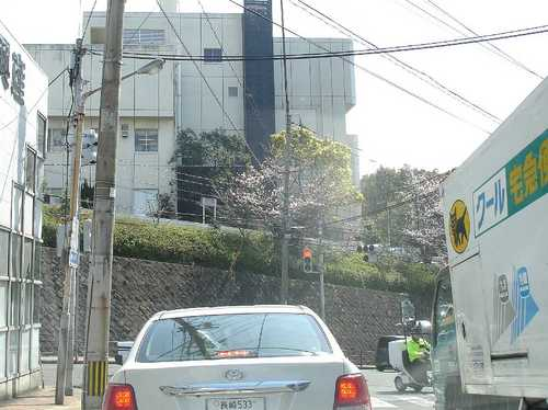 道中0.jpg